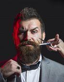 Bearded Man, Lush Beard, Handsome. Mens Haircut. Barber Scissors. Long Beard. Hipster In Barbershop. poster