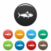 Tuna Fish Icon. Simple Illustration Of Tuna Fish Vector Icon For Web Design Isolated On White Backgr poster