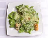 picture of caesar salad  - fresh cesar salad on white plate on the table - JPG