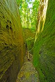 Mossy Trail Through A Natural Rock Ravine