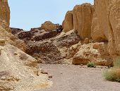 Scenic trek in the desert canyon Israel
