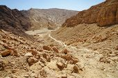 Scenic path descending into the desert valley, Israel