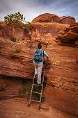 Hiker on a Ladder
