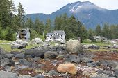 Waterfront Homes near Petersburg Alaska