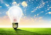 image of natural resources  - Image of light bulb against nature background - JPG