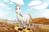 Illustration of a white horse near the wooden fence