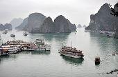 Tourist Junks In Halong Bay, Vietnam