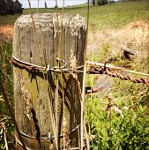 Closeup of post and wires in rural scene