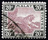 Postage Stamp Malaya 1905 Tiger, Panthera Tigris, Animal