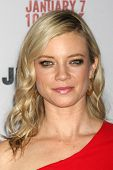 LOS ANGELES - JAN 6:  Amy Smart at the