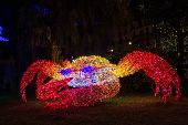 Christmas Lights Crab
