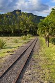 The ancient narrow gage railwayin tropical park, Mauritius.