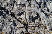 Rocks Texture For Aquarium