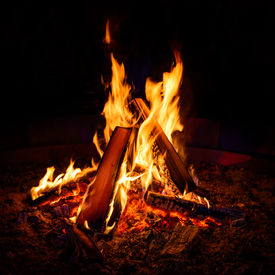 picture of combustion  - Camp fire in the night - JPG