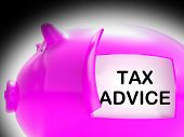 Tax Advice Piggy Bank Message Shows Advising About Taxes