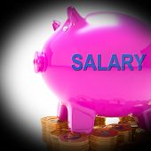 Salary Piggy Bank Coins Means Payroll And Earnings