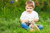 Cute Kid With Small Puppies Sitting On The Grass