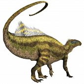 picture of herbivorous  - Tenontosaurus was an ornithopod herbivorous dinosaur that lived during the Cretaceous Period of North America - JPG