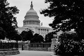 United States Capitol, Washington DC - Black and White