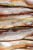 close up of golden smoke sprats