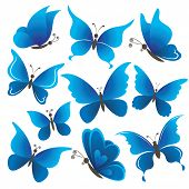 Set butterflies