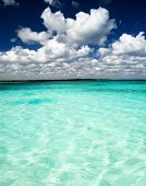 beautiful blue caribbean sea water