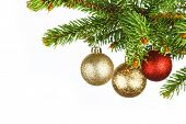 Christmas tree branch with decoration ball isolated on white