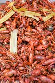 pic of acadian  - Boiled Crawfish - JPG