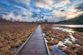 Boardwalk Leading To Forest Alongside Lake