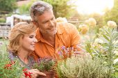 Portrait Of Happy Mature Couple Gardening Together Outdoor