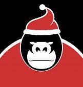 image of gorilla  - Gorilla Wearing Santa Hat  - JPG