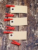 Paper Nameplates