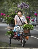 Chinese Florist On A Tricycle