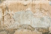 Decayed Concrete Wall