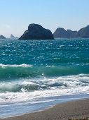 Jenner beach area, california