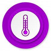 thermometer icon, violet button, temperature sign