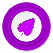 nature icon, violet button, leaf symbol