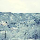 Winter On Forest Hills (Chezh Republic).