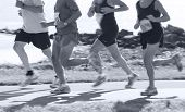 foto of competing  - Group of runners compete in the race on coastal road - JPG