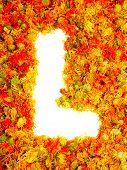 Flowers letter L.