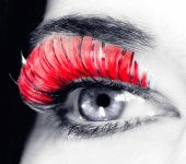 Closeup Of An Eye With Long Red Eyelashes