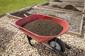 foto of wheelbarrow  - Wheelbarrow full of compost dirt sitting in a backyard garden ready to help grow healthy vegetables - JPG