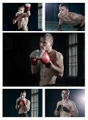 image of muay thai  - Set photos of a young man who is engaged in boxing or Muay Thai - JPG