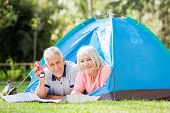 image of torches  - Portrait of senior couple with map and torch in tent at park - JPG