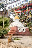 picture of buddhist  - Buddhist stupa - Buddhist place of worship in the Nepal ** Note: Soft Focus at 100%, best at smaller sizes - JPG