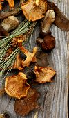 foto of dry grass  - Heap of Dried Forest Chanterelles Porcini and Boletus Mushrooms with Dry Grass Leafs and Fir Stems closeup in Rustic Wooden background - JPG