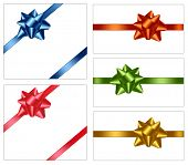 Collection of color bows with ribbons. Vector.