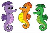Cute sea horses - vector illustration.