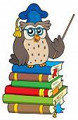 Owl teacher and books - vector illustration.
