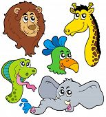 ZOO animals collection 6 - vector illustration.